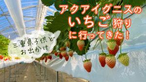四日市イチゴ狩り*アクアイグニスは沢山の品種が一度に楽しめお得感満載【三重県子供とお出かけ情報】