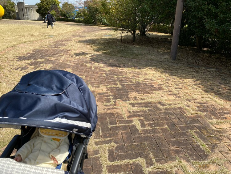 シドニー港公園舗装道路