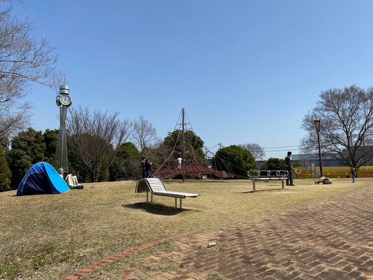 シドニー港公園芝生